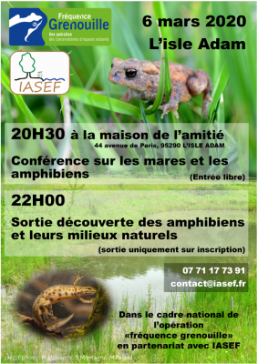 Frequence grenouille
